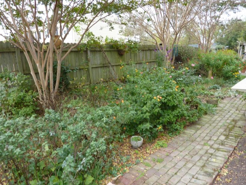 November garden Marl Inn Rolf Kramer